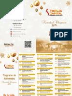 Programa de Actividades - Navidad Chapaca 2019