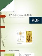 Patologia de Snc