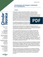 Recomendação de Calagem e Adubação Para o Cupuaçuzeiro