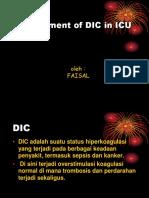 DIC.ppt
