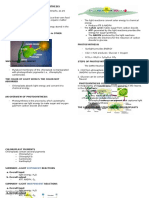 Biology Reviewer Basic Photosynthesis
