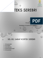 2018 02 20 Korteks Serebri