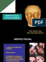 12) Nervio Facial