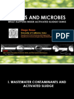 Rosso_Bubble and Microbes What Happens Inside Activated Sludge Tanks.pdf