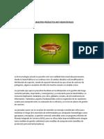 PLAN MAESTRO PRODUCTOS ANTI HEMATOFAGOS (1).docx