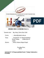 responsabilidad social(miguel myn).pdf