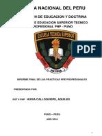 INFORME PNP PRACTICA.pdf