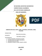 REALIDAD NACIONAL INFORME.docx