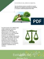 DERECHO-ECOLOGICO.pptx
