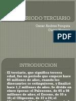 PERIODO TERCIARIO.pptx