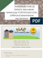 ELABORACIÓN DE PURÉ DE ARÁNDANOS (Vaccinium myrtillus) FORTIFICADO CON CAÑIHUA (Chenopodium pallidicaule).pptx