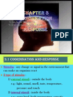 Chapter 3 - Coordination and Response