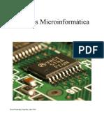 Apuntes Micro