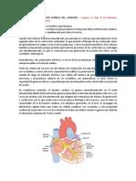 ELECTROFISIOLOGIA CARDIACA CMDM.pdf
