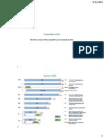 32BIO401-4 Influenza Virus.pdf