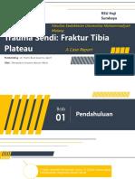 Fraktur Tibia Plateau_Firmanduta AMW