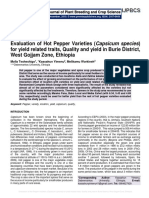 Evaluation of Hot Pepper Varieties (Capsicum species) for yield related traits, Quality and yield in Burie District, West Gojjam Zone, Ethiopia