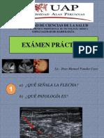 EXÁMEN PRACTICO - UAP 2017 - II.pptx