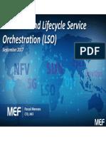 2. MEF LSO.pdf