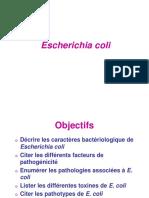 Escherichia coli (2016).pdf