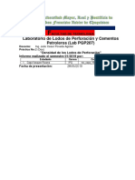 Densidadpgp207-2019.docx