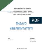Actividad Administrativa (Ensayo)