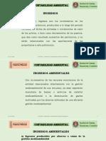 13. Ingresos Ambientales.pptx