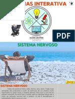 EF06CI07 - Sistema Nervoso