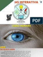 EF06CI08 - Visão Humana