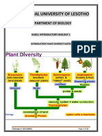 Plant+Diversity+Lecture+8-Angiosperms
