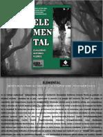 programa ELEMENTAL.pdf