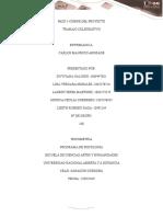 PASO 5-CIERRE DEL PROYECTO.docx