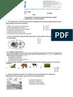 Examen 3° Trms Biologia Mtro Rene