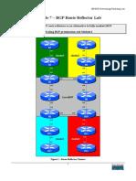 BGP Route Reflector Lab.pdf
