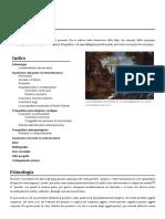 00 - Pensiero.pdf