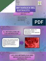 VÍA-METABÓLICA-DEL-ERITROCITO-ORIGINAL.pptx