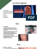 Enfermedades Del Sistema Digestivo JY