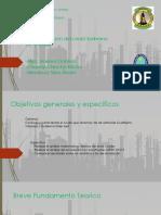 NUEVA PRESENTACION caracterizacion-1.pptx
