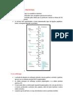 [Resumo]Bioquim - Catabolismo de Proteinas