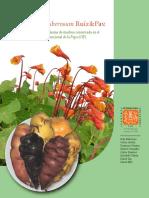 Colección de germoplasma de Mashua.pdf