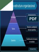 Estructura y niveles en la empresa.pdf