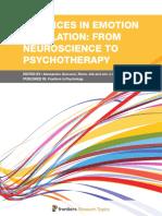 emotion regulation 2017.pdf