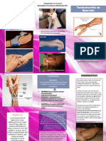 triptico modificacion rosada.pdf