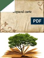 0_copacul_carte.pdf
