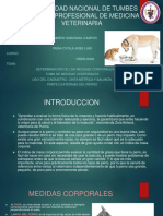 Determinación de Las Medidas Corporales Del Perro, Toma de Medidas Corporales, Uso de Cinemómetro
