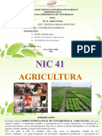 NIC 41- AGRICULTURA.pptx