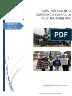 GUIA N1 .pdf