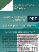 Ponencia Los Bosques Nativos en Cordoba, Por Natalia de Luca