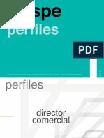 PERFILES DE PUESTO V1.pptx