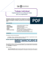 Guia de Trabajo Individual.pdf